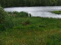 Jezioro Dyk w P�cznie